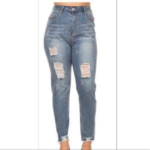 Denim - Plus Size Distressed Jeans